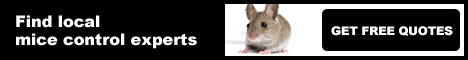 mice control